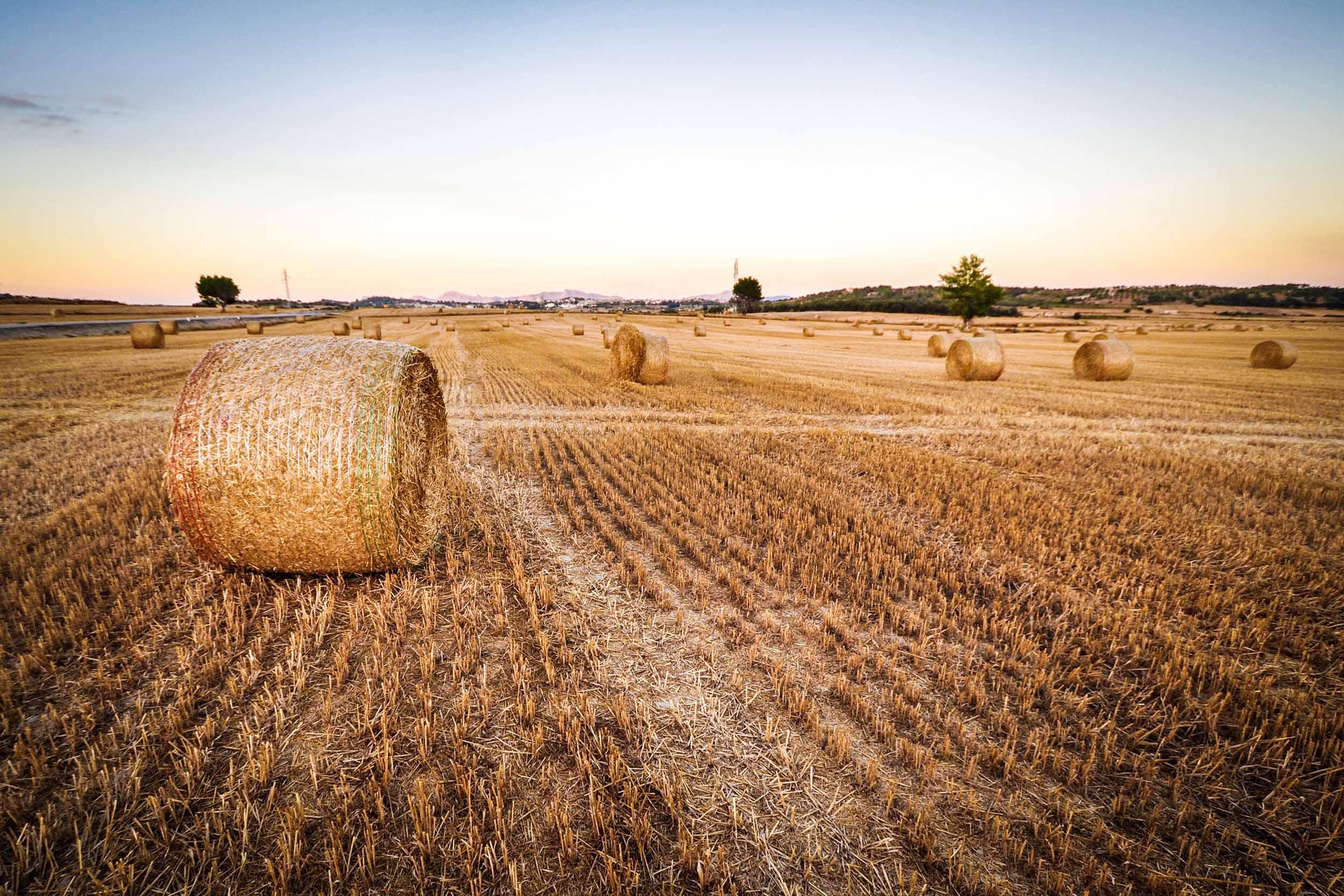 Agricultura y Agua